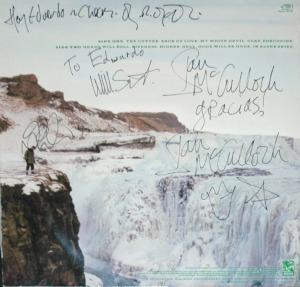 porcupine-firmado-02